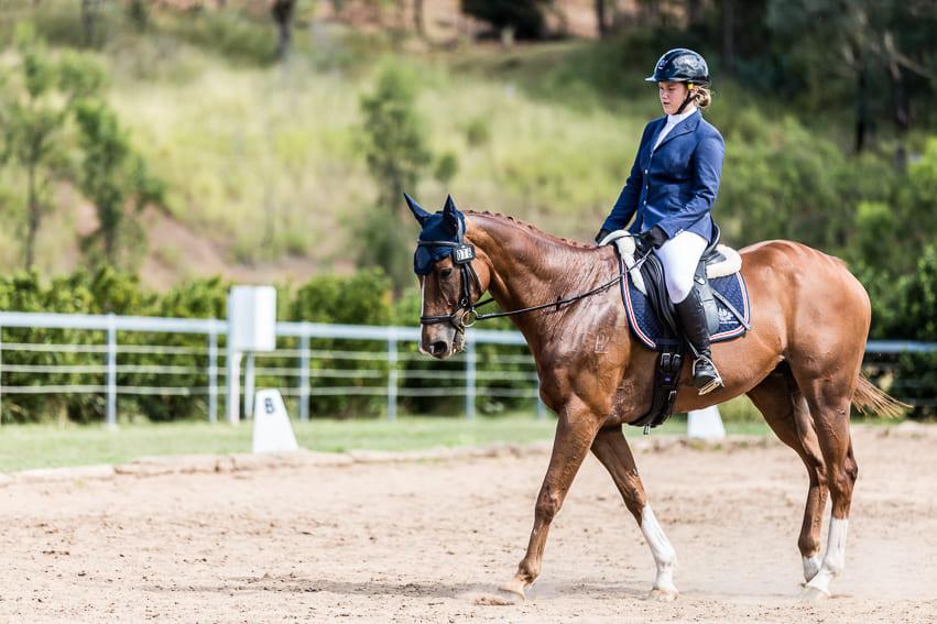 Equestrian Glennie School